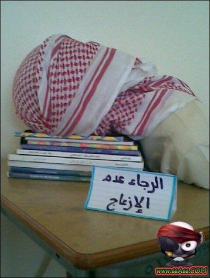 الطلاب والطالبات