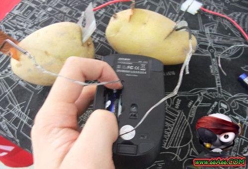 الكهرياء البطاطس