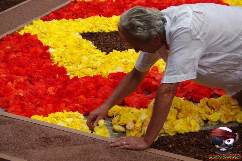 مهرجان الزهور